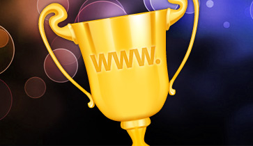 Website Manager to Website Champion